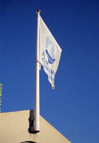 Flagga med logo